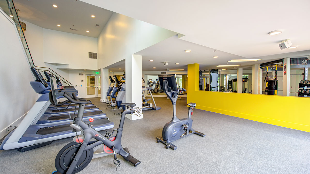 IMPACT Fitness Center
